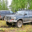 Постер, плакат: Toyota Land Cruiser 80