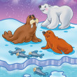 Arctic Ocean wild animals — Stockfoto