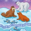 Arctic Ocean wild animals — Stock Photo