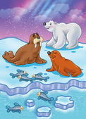 Arctic Ocean wild animals — Stock Photo