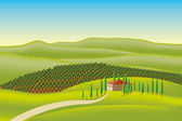Vineyard illustration — Stock Vector