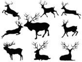 Siluetas de los ciervos — Vector de stock