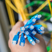 Optic fiber cables — Stock Photo