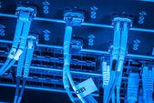Fiber network server — Stock Photo