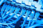 Síťové rozbočovače a patch kabely — Stock fotografie