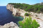Adriatic summer sunny coast cliff Croatia — Stock Photo