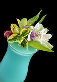 Alcohol drink, cocktail with flower, isolated — Stock Photo