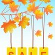 Autumn sale — Stock Vector