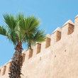 Wall surrounding the Medina at Rabat — Stock Photo