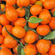 Stock Photo: Clementine orange