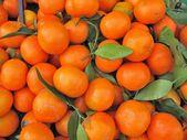 Clementine orange — Stock Photo