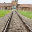 Stock Photo: Main entrance to Auschwitz