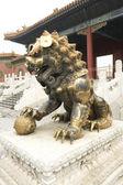 Forbidden City cuprum lion,beijing China — Stock Photo