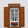 Old Windows and Shutters - Stock fotografie