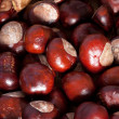 Heap of brown Chestnuts, autumn concept image - Stock Photo