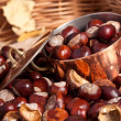 Chestnuts and copper kettle, autumn concept image — Stockfoto