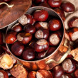 Chestnuts and copper kettle, autumn concept image — Stock Photo