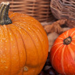 Two pumpkins with leaves and wodden basket - Stock Photo