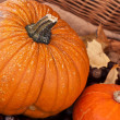 Two pumpkins with leaves and wodden basket — Stok fotoğraf