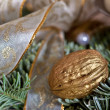 Gold Walnut Advent decoration - Stock Photo