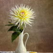 Still Life with Dahila - Stock Photo