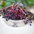Elderberries — Foto Stock