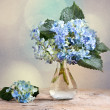 Hortensia Flowers — Stock Photo