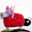 Baby on Ladybug - Stock Photo