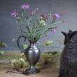 Still Life with Cat — Stock Photo