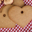 Gingerbread — Stock fotografie
