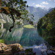 Obersee — Stock Photo
