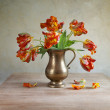 Ornamental tulip still life — Stock Photo