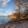 Lake shore in glowing evening light - Stock Photo