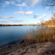 Lake shore in glowing evening light - 