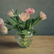 Pink Tulips — Stock Photo #23299808