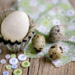 Quail Eggs and Duck Egg - Stock Photo