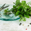 Bundle of fresh Kitchen Herbs — Stock Photo