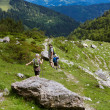 Hiking in the Alps — Stock Photo #30368109