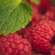 Raspberries — Foto de Stock
