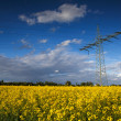 Electric Transmission Tower — Stockfoto