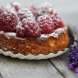 Small french Raspberry Tarte with icing sugar — Stock Photo