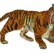 Stock Photo: Tiger raging