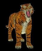 Tiger mobbing — Stockfoto