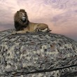 Lion resting - 3D render — Stock Photo