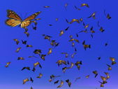 Monarch butterflies migration - 3D render — Stock Photo