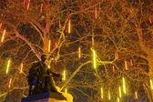 Festival of lights on a tree, Geneva, Switzerland — Stock Photo
