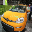 Stock Photo: Biogas Fiat Panda