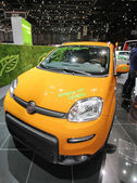 Biogas Fiat Panda — Stock Photo