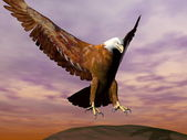 Eagle landing - 3D render — Stock Photo