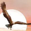 Eagle door zonsondergang - 3d render — Stockfoto